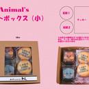 Animal's アニマルズ